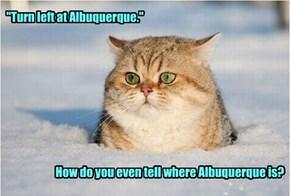 """Turn left at Albuquerque.""                                  How do you even tell where Albuquerque is?"