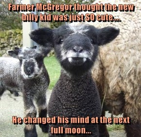 Farmer McGregor thought the new billy kid was just SO cute....  He changed his mind at the next            full moon...