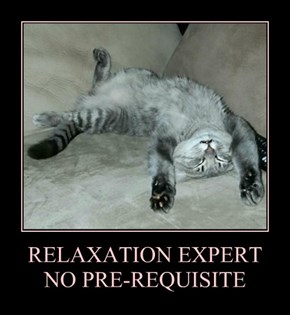 RELAXATION EXPERT NO PRE-REQUISITE