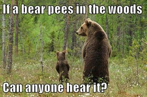 If a bear pees in the woods  Can anyone hear it?