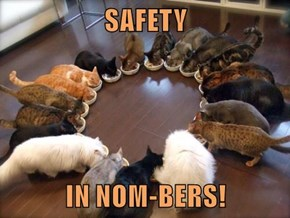 SAFETY   IN NOM-BERS!