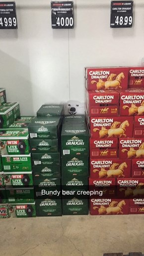 One Happy Bear With All the Beer