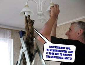 I'D BETTER HELP YOU. I REMEMEMBER HOW LONG IT TOOK YOU TO HOOK UP THE CHRISTMAS LIGHTS!