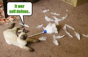 It wer self defens..