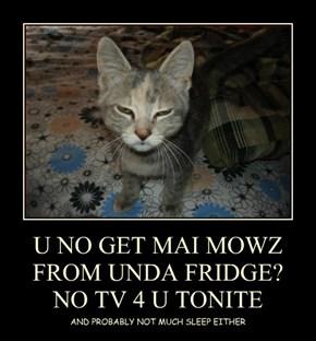 U NO GET MAI MOWZ FROM UNDA FRIDGE? NO TV 4 U TONITE