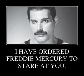 I HAVE ORDERED FREDDIE MERCURY TO STARE AT YOU.