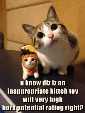 u know diz iz an inappropriate kitteh toy wiff very high                             bork potential rating right?