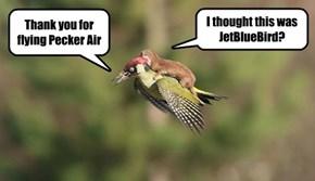 Last time I fly WeaselJet