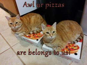 Awl ur pizzas  are belongs to us!