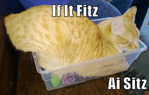 If It Fitz  Ai Sitz