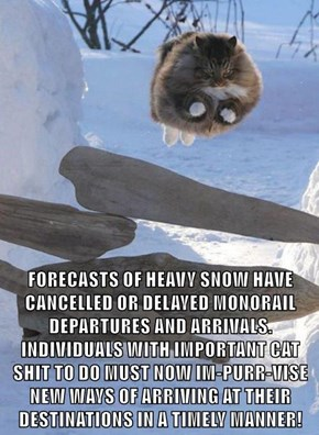 FORECASTS OF HEAVY SNOW HAVE CANCELLED OR DELAYED MONORAIL DEPARTURES AND ARRIVALS. INDIVIDUALS WITH IMPORTANT CAT sh*t TO DO MUST NOW IM-PURR-VISE NEW WAYS OF ARRIVING AT THEIR DESTINATIONS IN A TIMELY MANNER!