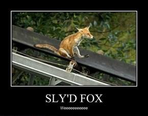 One Crazy Fox