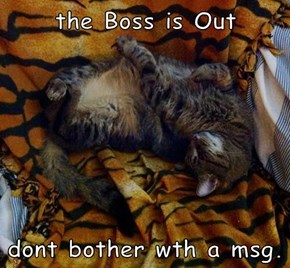 the Boss is Out  dont bother wth a msg.