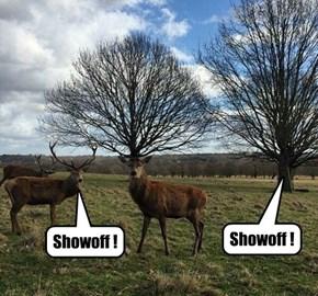 Nobody likes a Showoff.