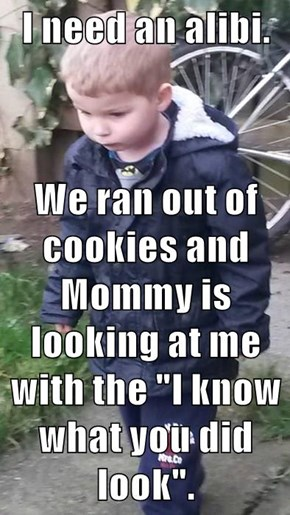 "I need an alibi.  We ran out of cookies and Mommy is looking at me with the ""I know what you did look""."