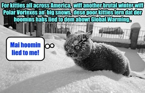 Kittie realizes the cold reality of Global Warming..