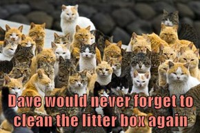 Dave would never forget to clean the litter box again