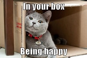 In your box  Being happy