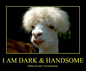 I AM DARK & HANDSOME