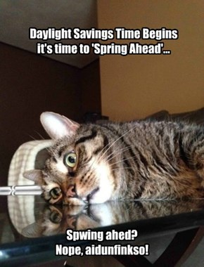 Daylight Savings Time Begins it's time to 'Spring Ahead'...