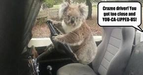 I Prefer Eucalyptus.