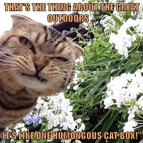 """THAT'S THE THING ABOUT THE GREAT OUTDOORS ...  IT'S LIKE ONE HUMONGOUS CAT BOX!"""""""