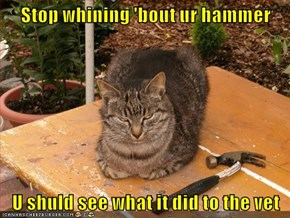 Stop whining 'bout ur hammer  U shuld see what it did to the vet