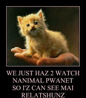WE JUST HAZ 2 WATCH NANIMAL PWANET  SO I'Z CAN SEE MAI RELATSHUNZ