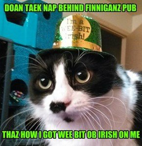 Kitteh's PSA for Saint Patrick's Day