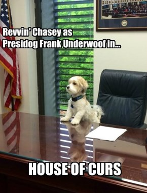 Revvin' Chasey as Presidog Frank Underwoof in...