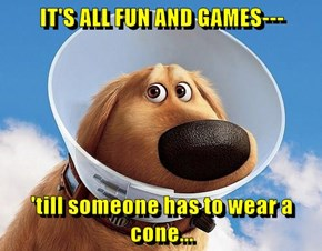 IT'S ALL FUN AND GAMES---  'till someone has to wear a cone...