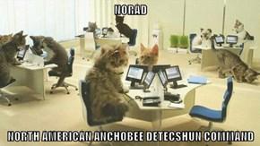 NORAD  NORTH AMERICAN ANCHOBEE DETECSHUN COMMAND
