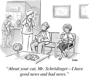 At The Vet With Mr. Schrödinger