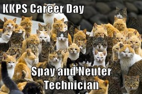 KKPS Career Day  Spay and Neuter Technician