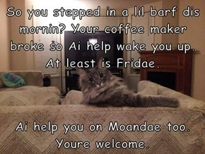 So you stepped in a lil barf dis mornin? Your coffee maker broke so Ai help wake you up. At least is Fridae.   Ai help you on Moandae too. Youre welcome.