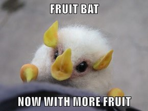 FRUIT BAT  NOW WITH MORE FRUIT