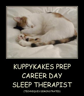 KUPPYKAKES PREP CAREER DAY SLEEP THERAPIST