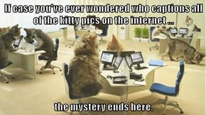 If case you've ever wondered who captions all of the kitty pics on the internet ...  the mystery ends here.