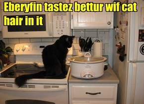 Eberyfin tastez bettur wif cat hair in it