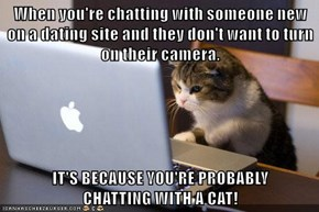 When you're chatting with someone new on a dating site and they don't want to turn on their camera.  IT'S BECAUSE YOU'RE PROBABLY                                       CHATTING WITH A CAT!