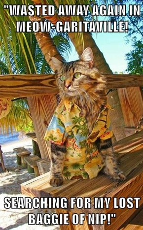 """""""WASTED AWAY AGAIN IN MEOW-GARITAVILLE!  SEARCHING FOR MY LOST BAGGIE OF NIP!"""""""