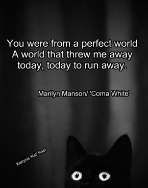 You were from a perfect world   A world that threw me away   today, today to run away.