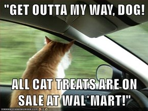 """""""GET OUTTA MY WAY, DOG!  ALL CAT TREATS ARE ON SALE AT WAL*MART!"""""""