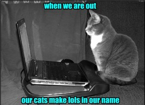 How We Get FP's On Lolcats
