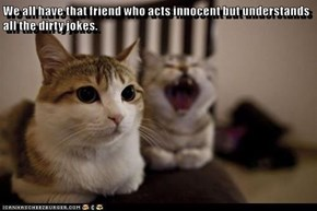 We all have that friend who acts innocent but understands all the dirty jokes.