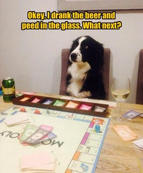 Okey. I drank the beer and  peed in the glass. What next?