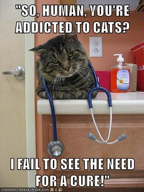 """""""SO, HUMAN, YOU'RE ADDICTED TO CATS?  I FAIL TO SEE THE NEED FOR A CURE!"""""""