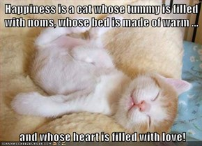 Happiness is a cat whose tummy is filled with noms, whose bed is made of warm ...   and whose heart is filled with love!