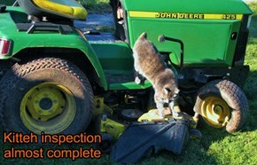 Kitteh inspection almost complete