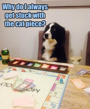 Why do I always get stuck with the cat piece?